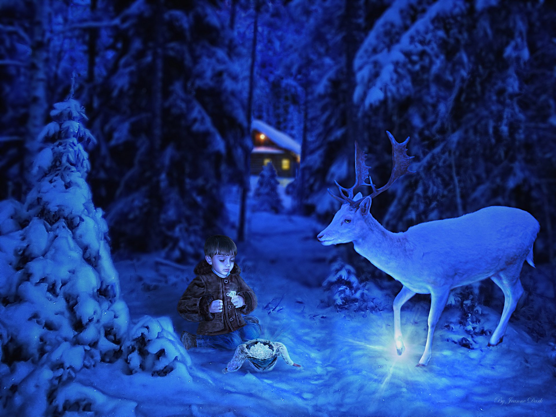 Fantasy - Child  Fantasy Christmas Reindeer Little Boy Magic Night Wallpaper