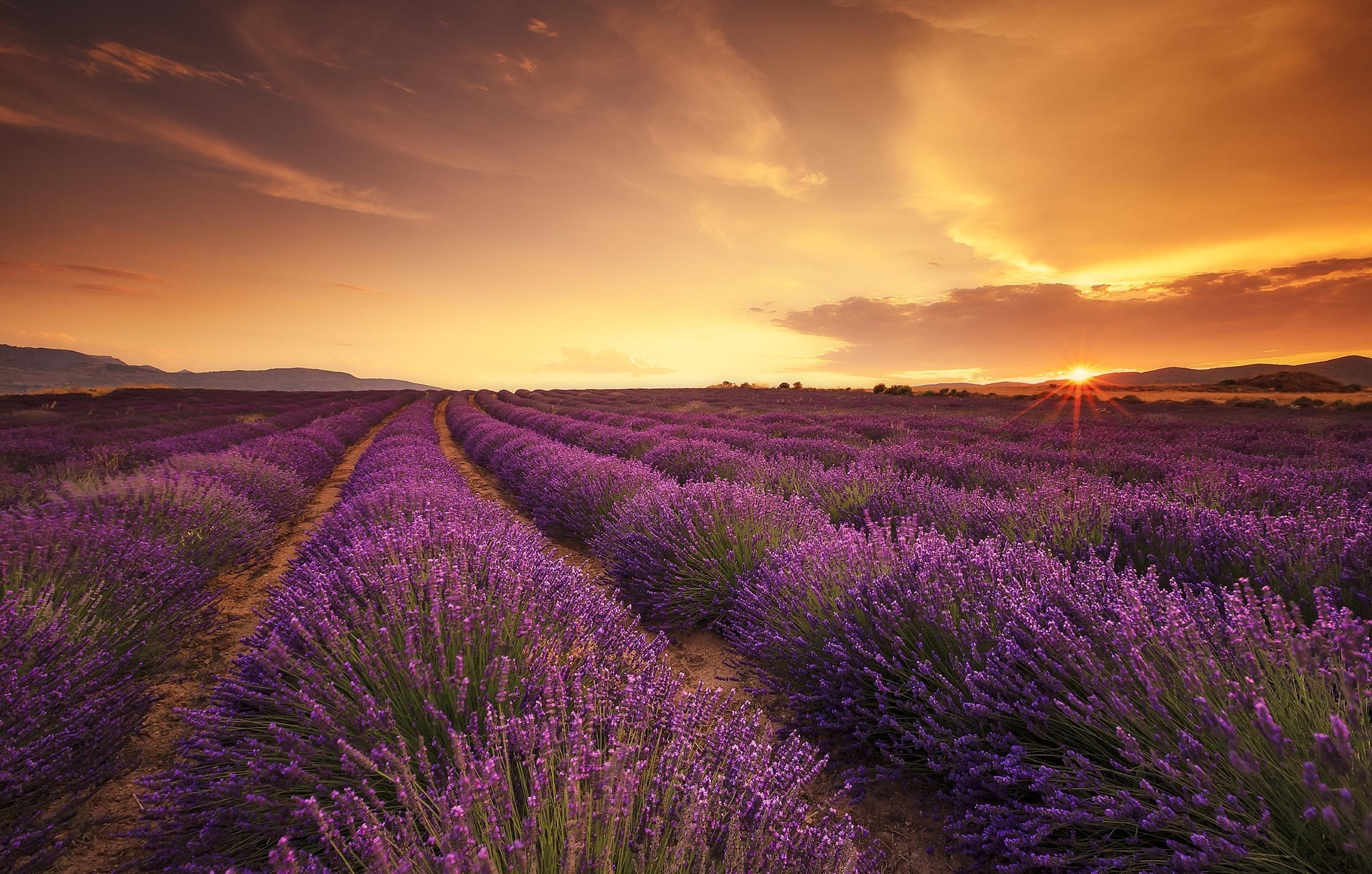 Sunset Wallpapers HD for Desktop Background Wallpaper Cute Sky d