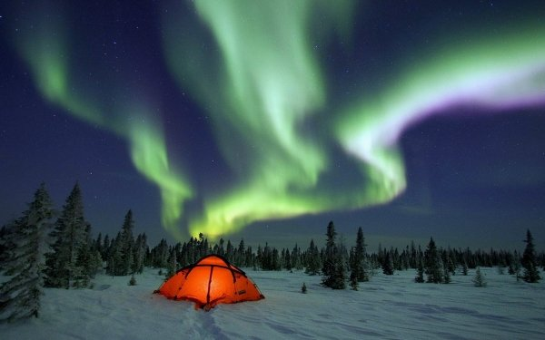 Photography Camping Sky Aurora Borealis Light Winter Snow Tent Starry Sky HD Wallpaper | Background Image