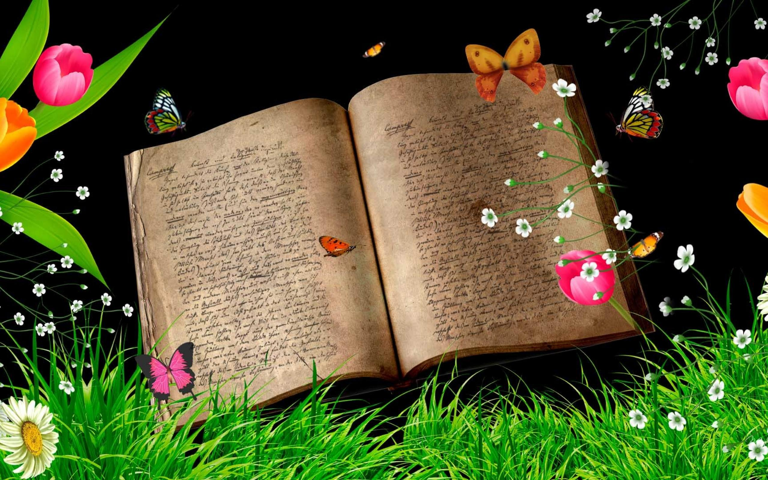 book hd wallpaper  background image  2560x1600  id