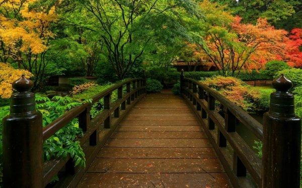 Man Made Japanese Garden Bridge Fall Foliage HD Wallpaper | Background Image