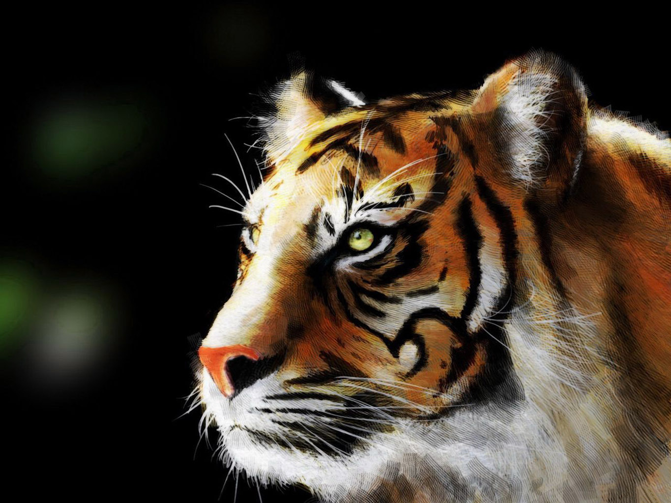 tiger wallpaper and background | 1365x1024 | id:74673