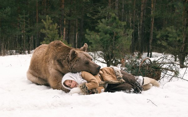 Women Mood Woman Bear Sleeping Cuddle Snow Winter HD Wallpaper | Background Image