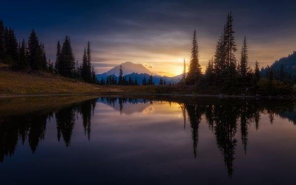 Earth Reflection Nature Sunrise Tree HD Wallpaper | Background Image