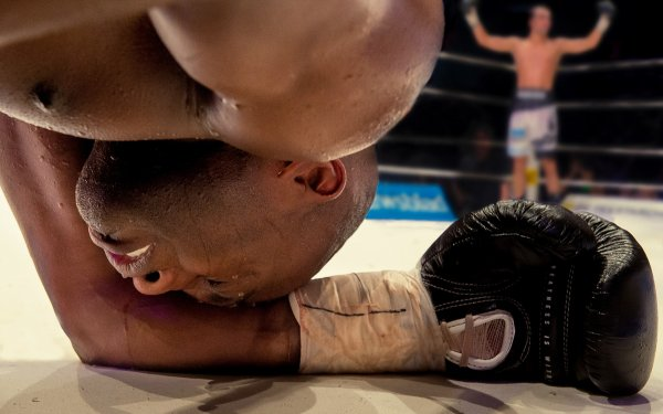 Sports Boxing Knock Out HD Wallpaper   Background Image