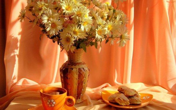 Fotografía Bodegón Flor Margarita Vase Cup Plate Galleta Fondo de pantalla HD | Fondo de Escritorio