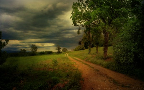 Man Made Road Nature Path Country Cloud Sunset Dirt Road Tree HD Wallpaper | Background Image