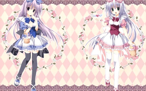Anime Alice or Alice: Siscon Niisan to Futago no Imouto HD Wallpaper   Background Image