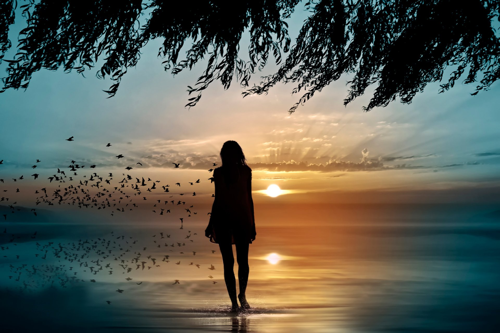 Artistic - Women  Woman Girl Rear Sunrise Reflection Silhouette Bird Sky Wallpaper