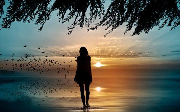 Women Artistic Woman Rear Sunrise Reflection Silhouette Bird Sky HD Wallpaper | Background Image