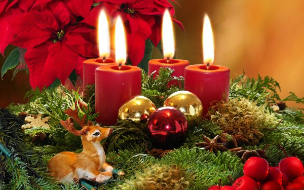 Holiday Christmas Christmas Ornaments Poinsettia Deer Candle HD Wallpaper   Background Image