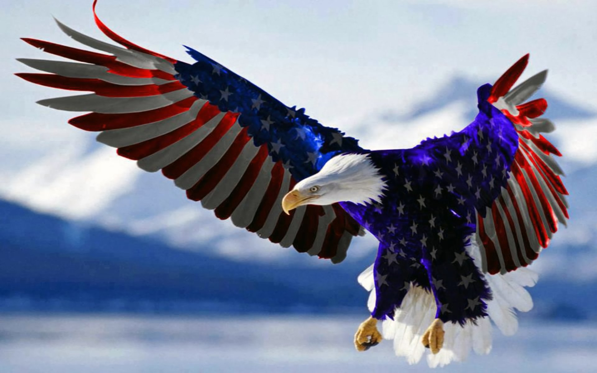 Bald Eagle In Colors Of American Flag Hd Wallpaper Background