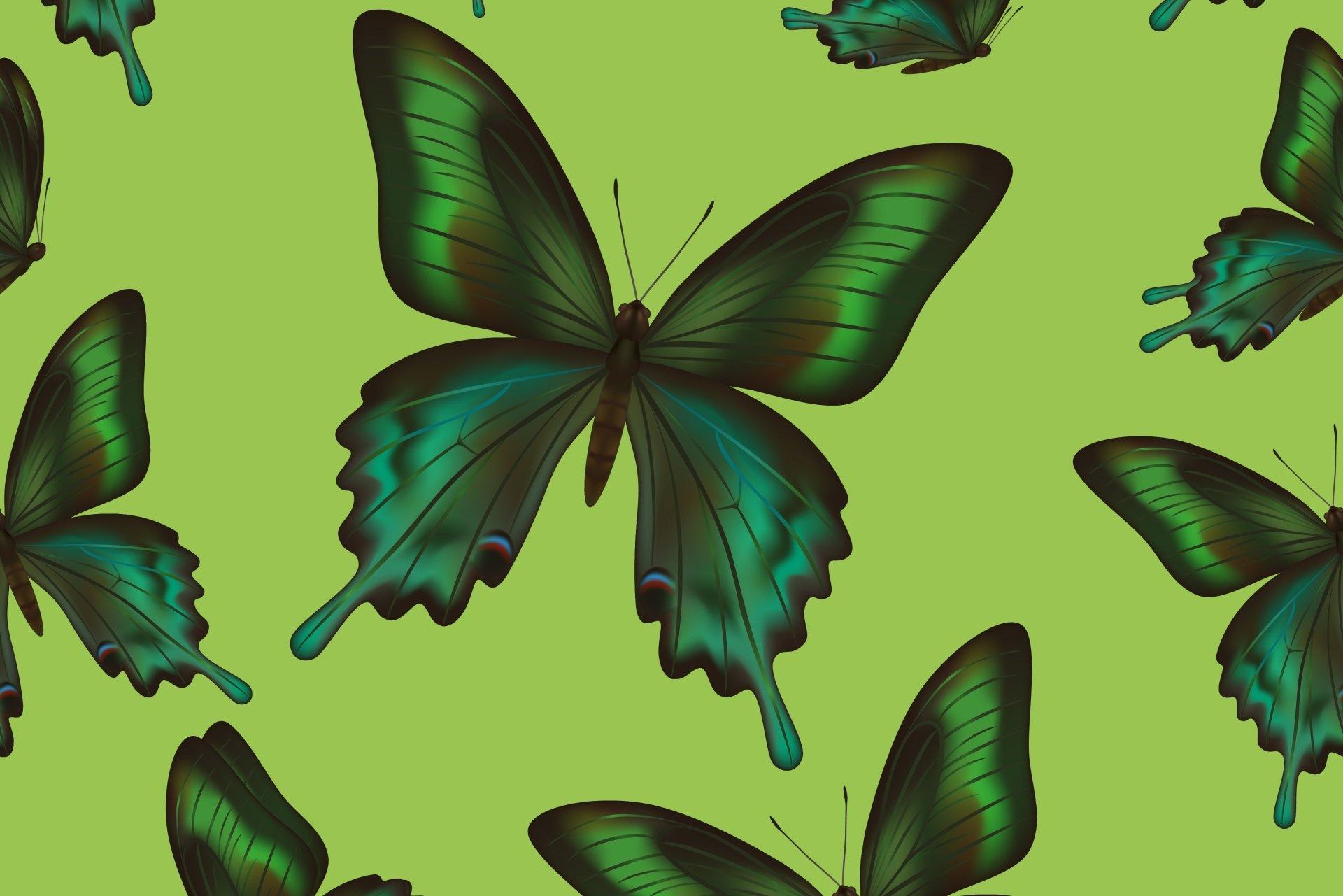 艺术 - 蝴蝶  艺术 绿色 壁纸