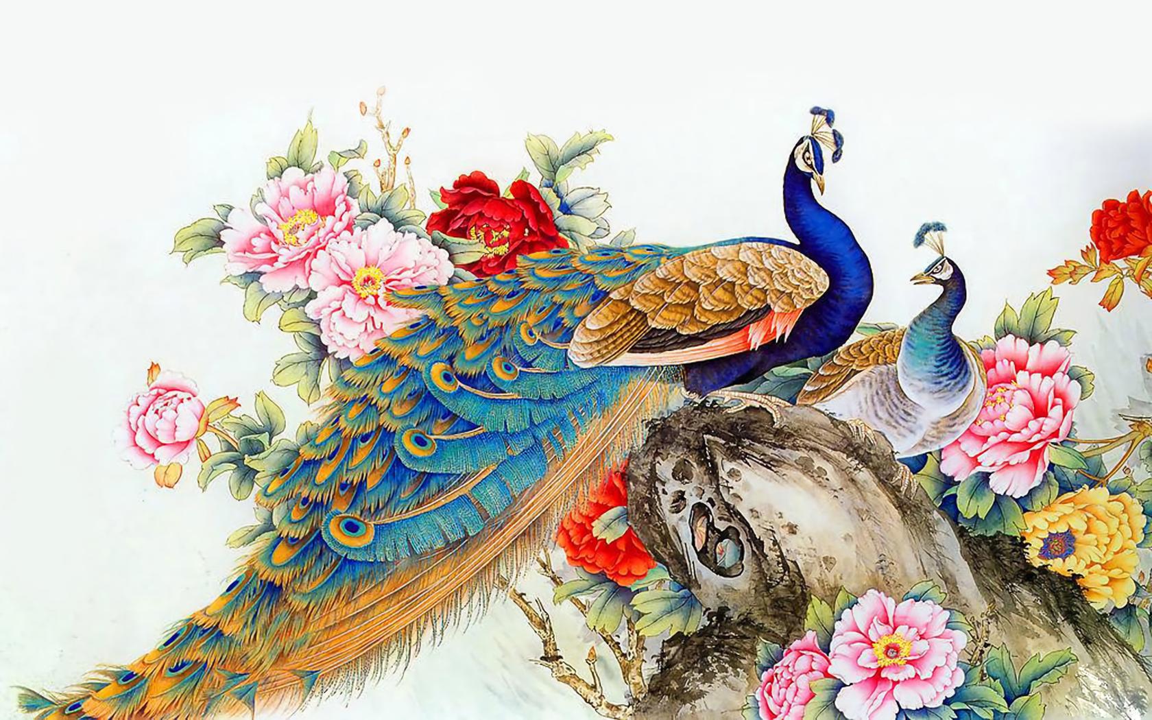 Peacock Art Photography Wallpaper Hq Backgrounds: Peacock Art Wallpaper And Background Image