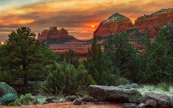 Earth Sunset Sedona Arizona Tree Rock HD Wallpaper | Background Image