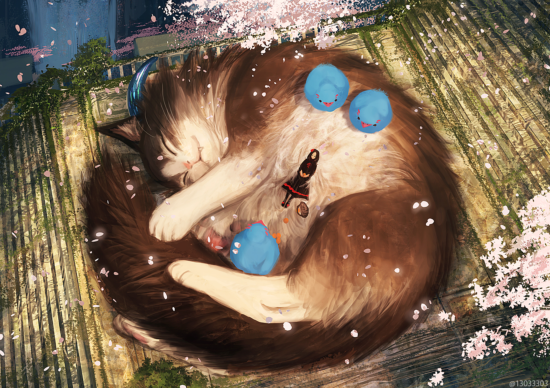 Anime - Original  Bird Cat Animal Cherry Blossom Petal Dress Girl Sleeping Wallpaper
