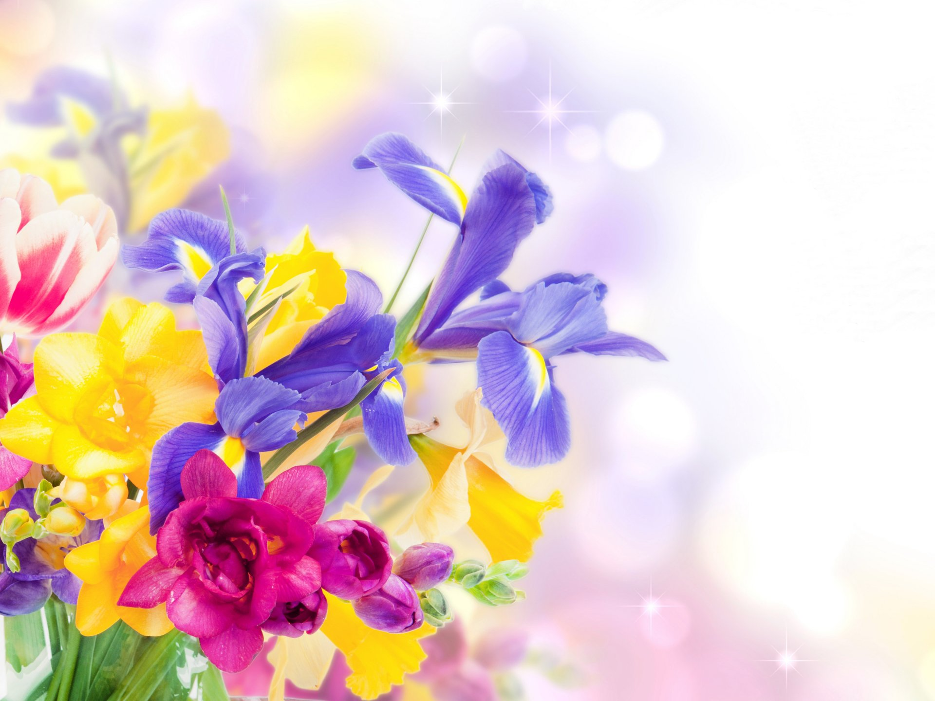 Wallpapers ID:812608