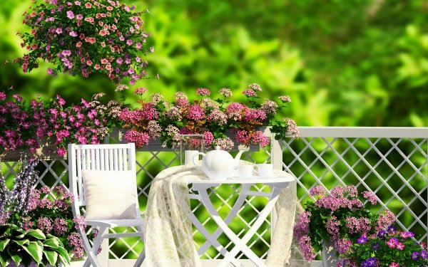 Photography Still Life Porch Chair Plant Flower Blossom Spring Pink Flower HD Wallpaper   Background Image