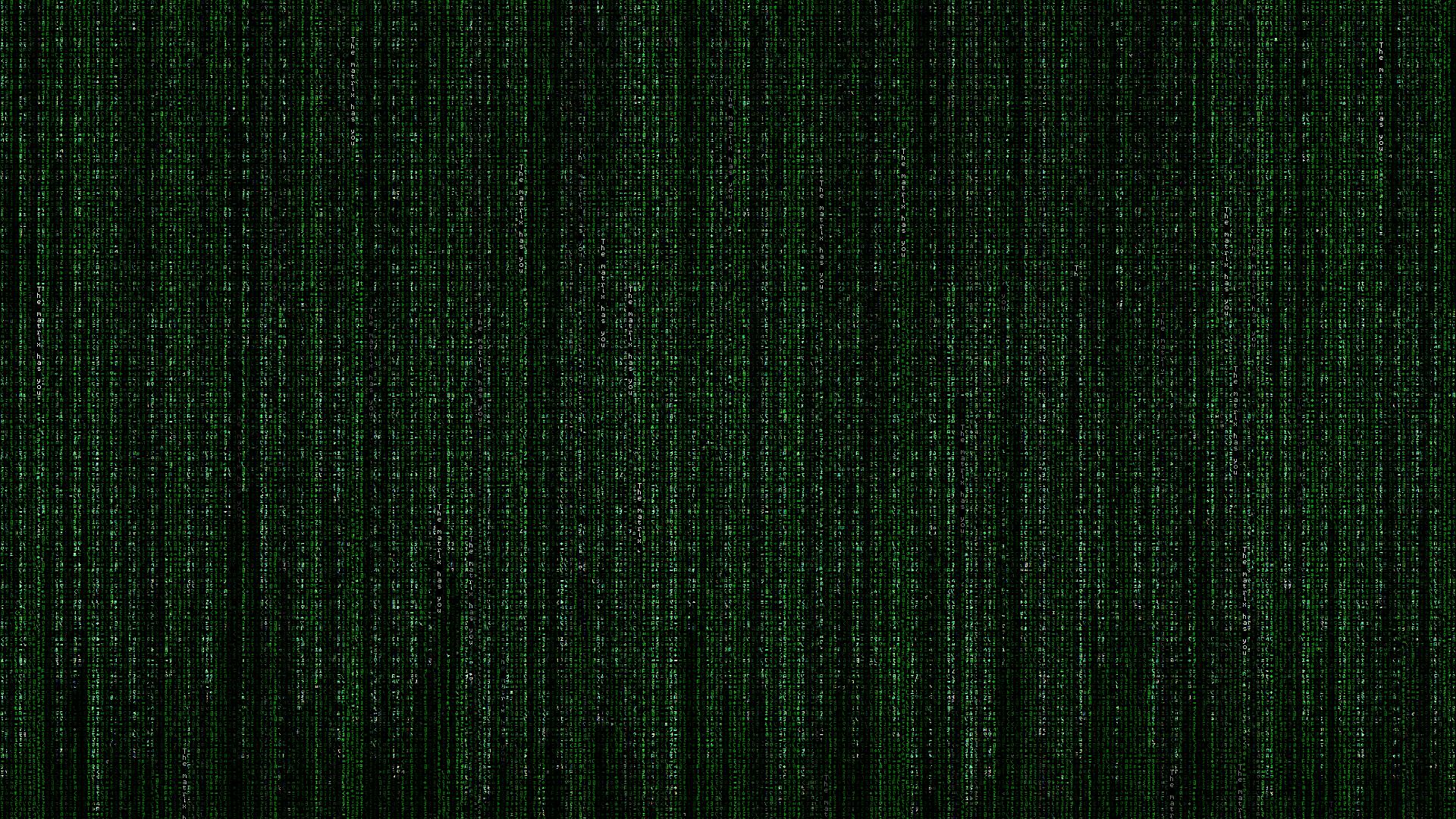 电影 - 黑客帝国  绿色 Hacking 壁纸