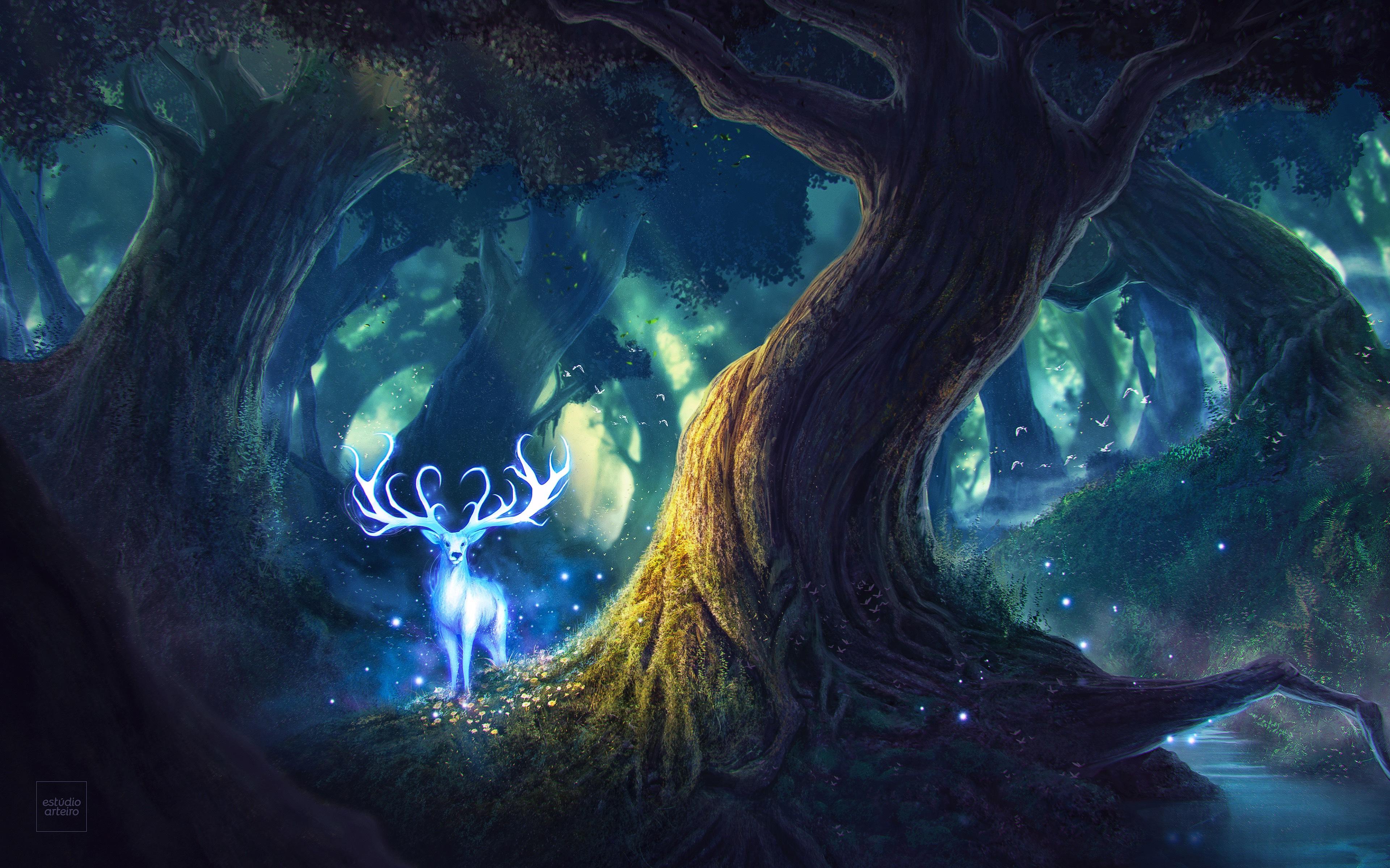Magic Forest 4k Ultra Fondo De Pantalla Hd Fondo De