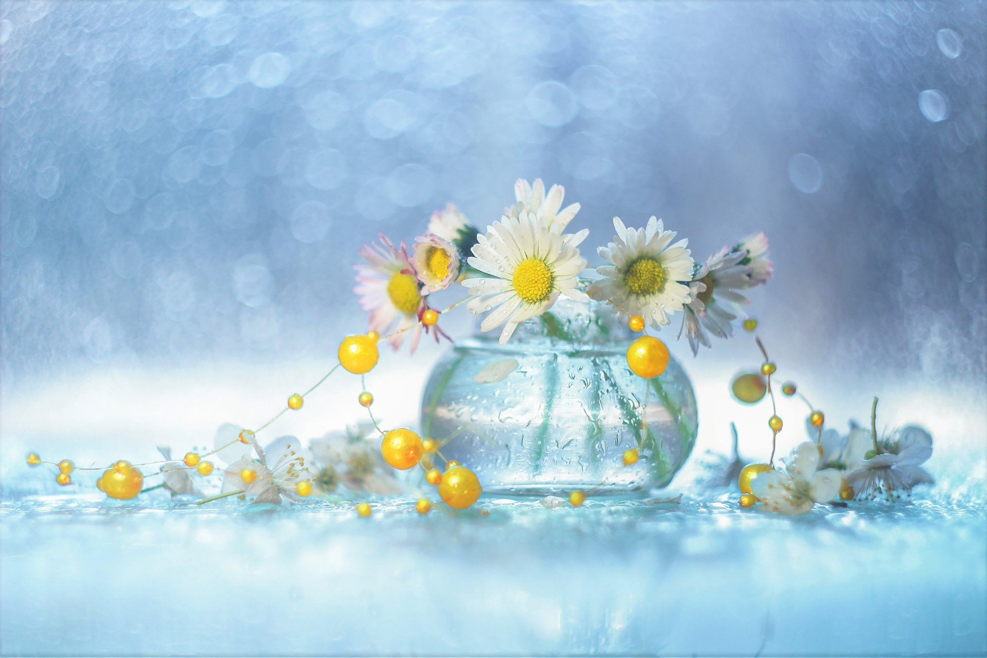 Wallpapers ID:858574