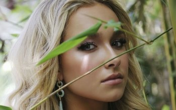 Berühmte Personen - Hayden Panettiere Wallpapers and Backgrounds ID : 86481