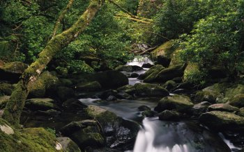 Earth - Stream Wallpapers and Backgrounds ID : 86663