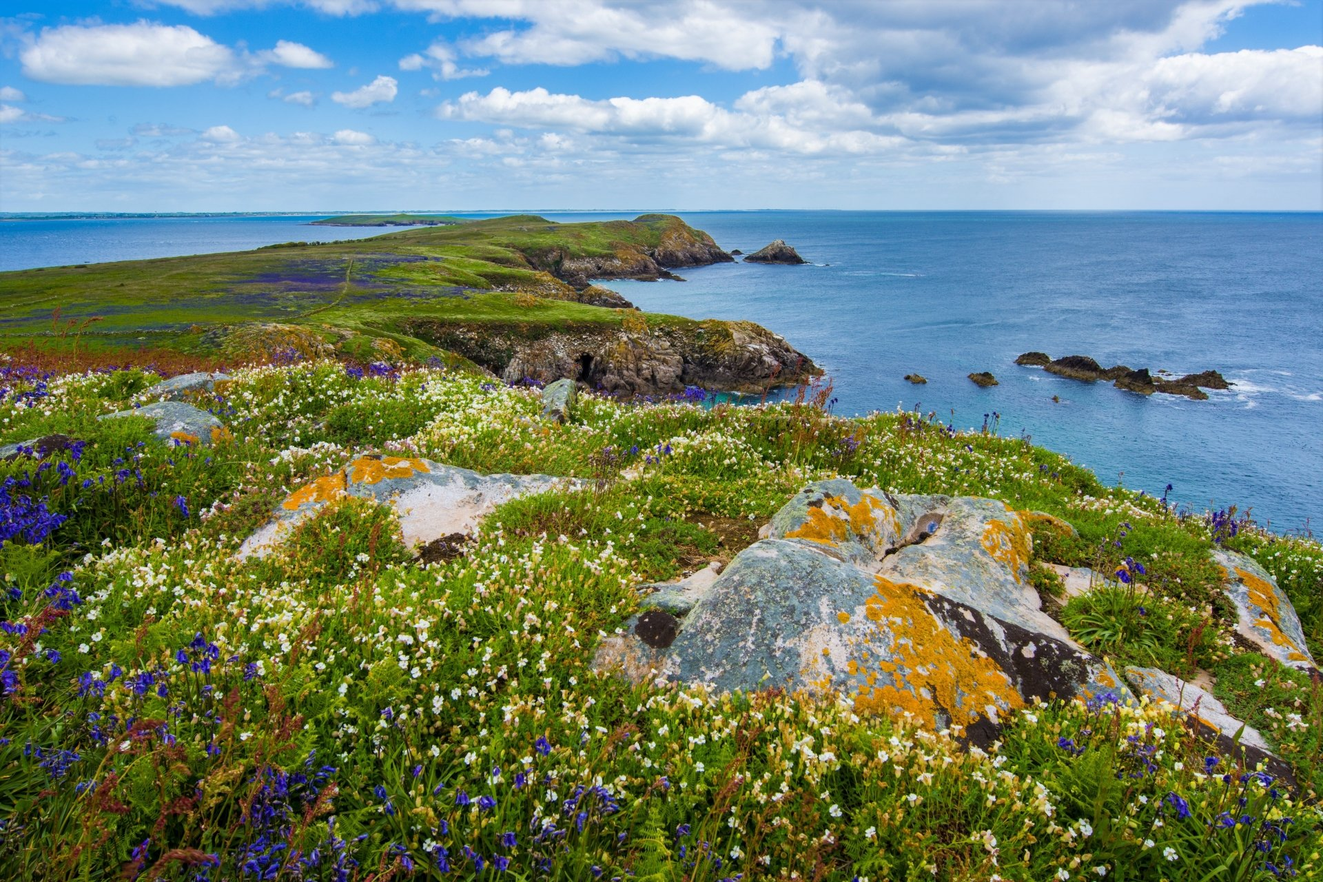 Earth - Coastline  Cloud Horizon Earth Coast Ocean Sea Flower Ireland Wallpaper