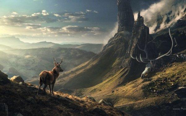 Artistic Desktopography Fantasy Deer Landscape HD Wallpaper   Background Image