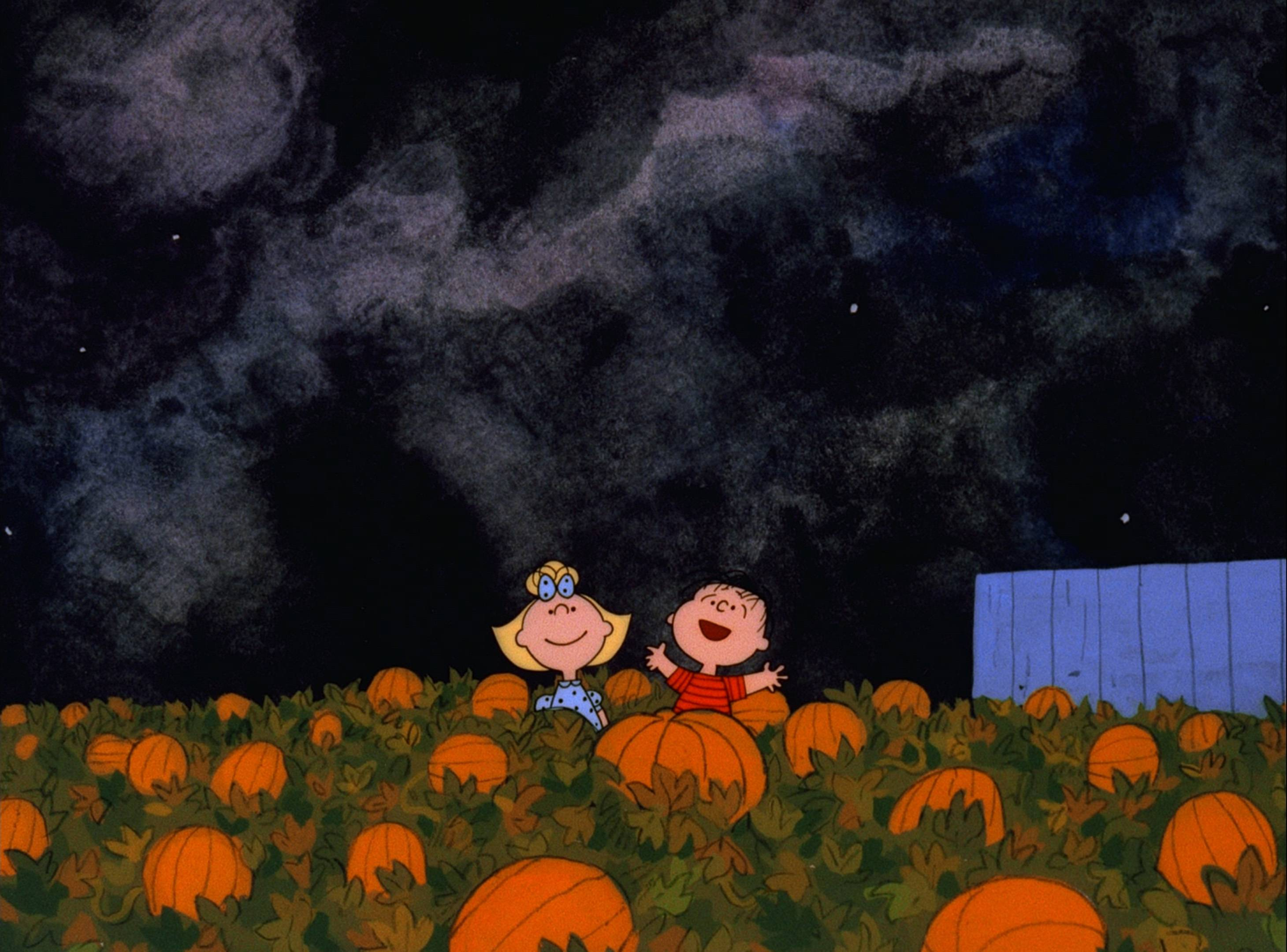 it's the great pumpkin, charlie brown hd wallpaper | background