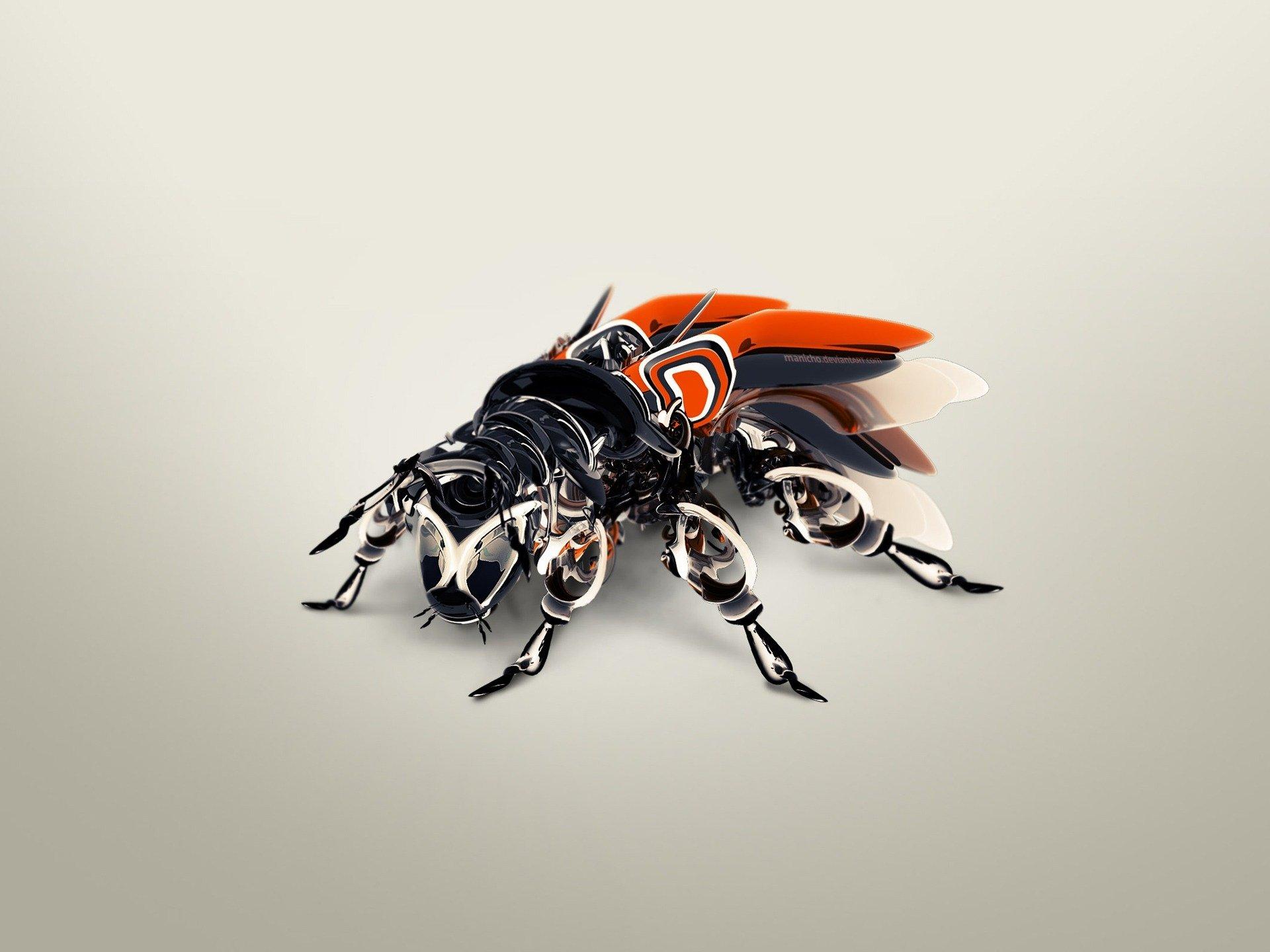 CGI - Other  Fly Bug CGI Wallpaper