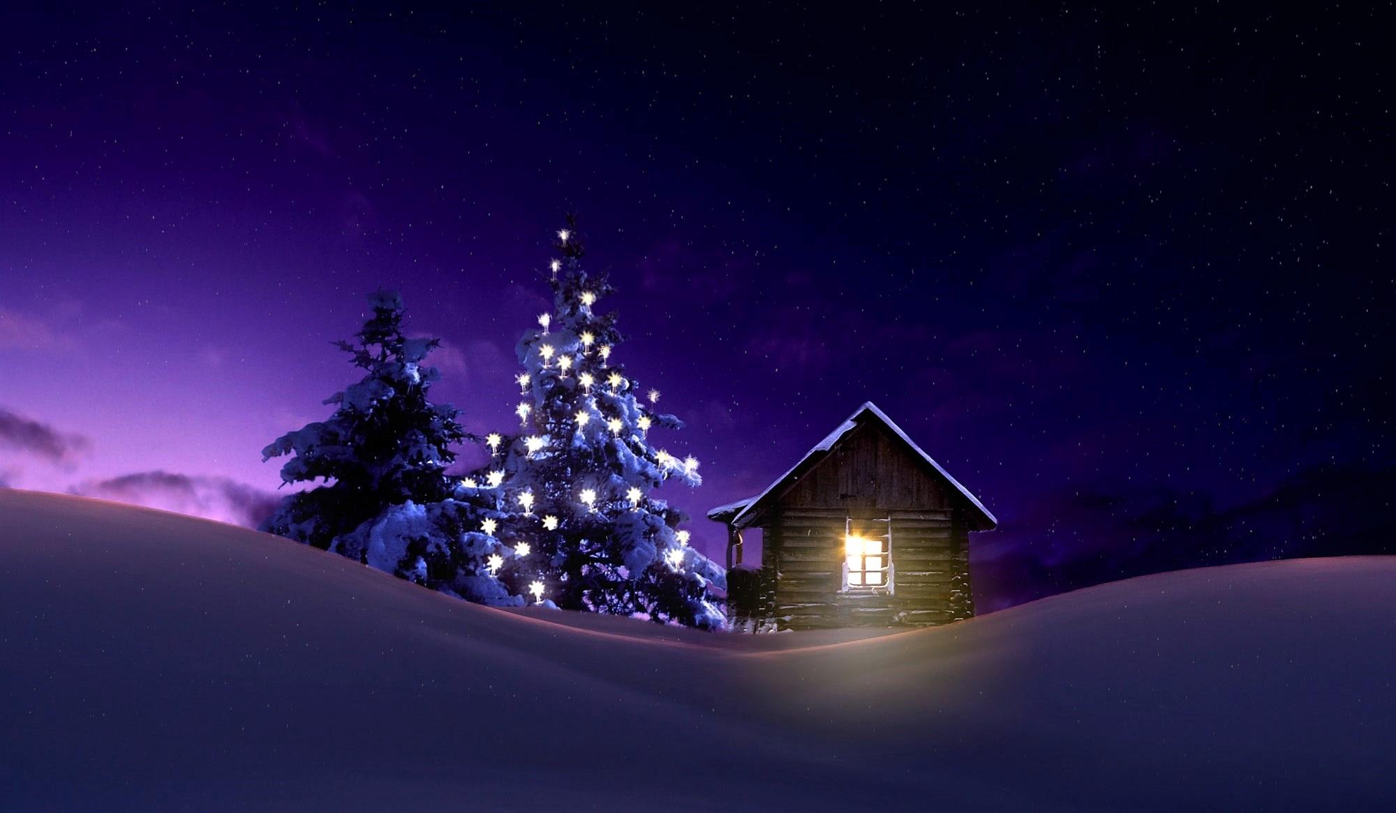 Lighted Tree Outside Winter Cabin Hd