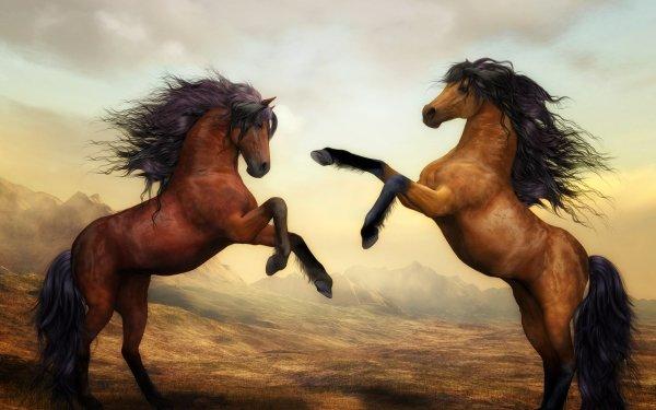 Animal Horse Artistic Painting Arabian Horse HD Wallpaper | Background Image