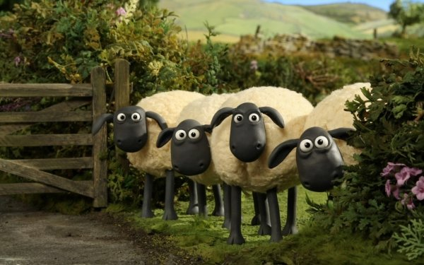 TV Show Shaun The Sheep Sheep HD Wallpaper   Background Image