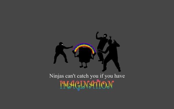 Humor Ninjas HD Wallpaper | Background Image