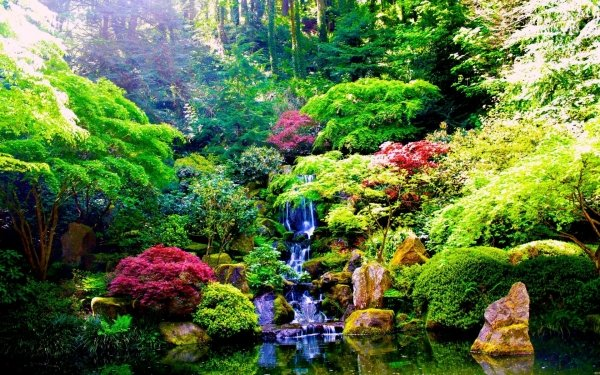 Earth Waterfall Waterfalls Nature Garden Plant Vegetation Water Forest HD Wallpaper   Background Image