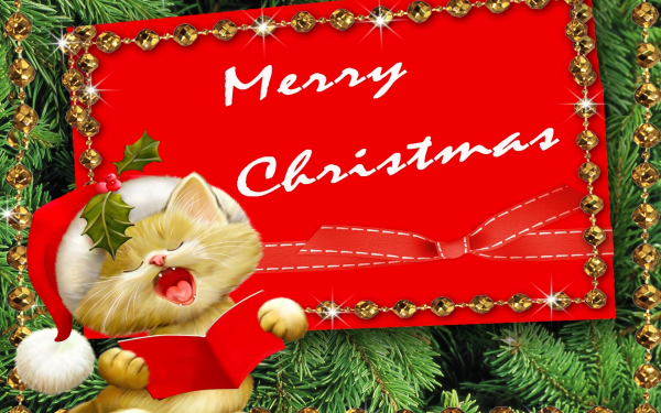 Holiday Christmas Cat Book Card Merry Christmas HD Wallpaper | Background Image