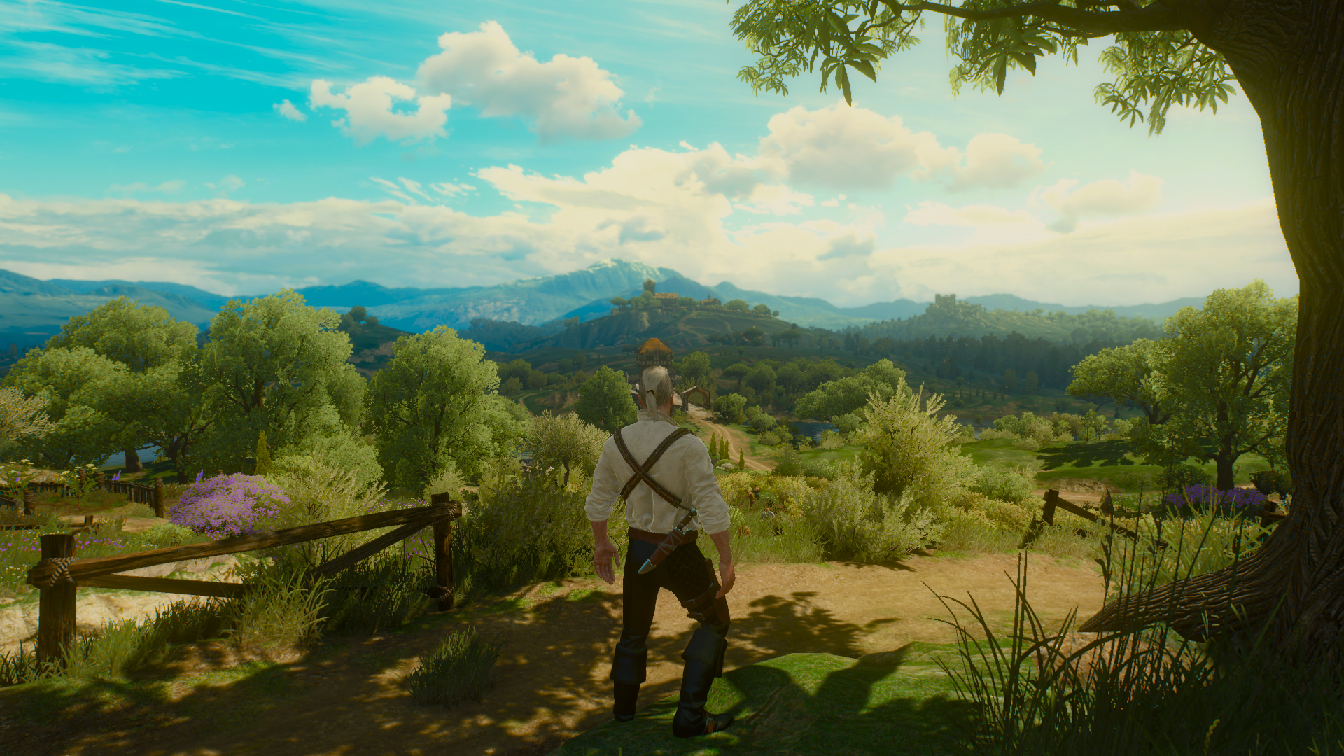 The Witcher 3 Blood And Wine Chill Lookin Hd Wallpaper