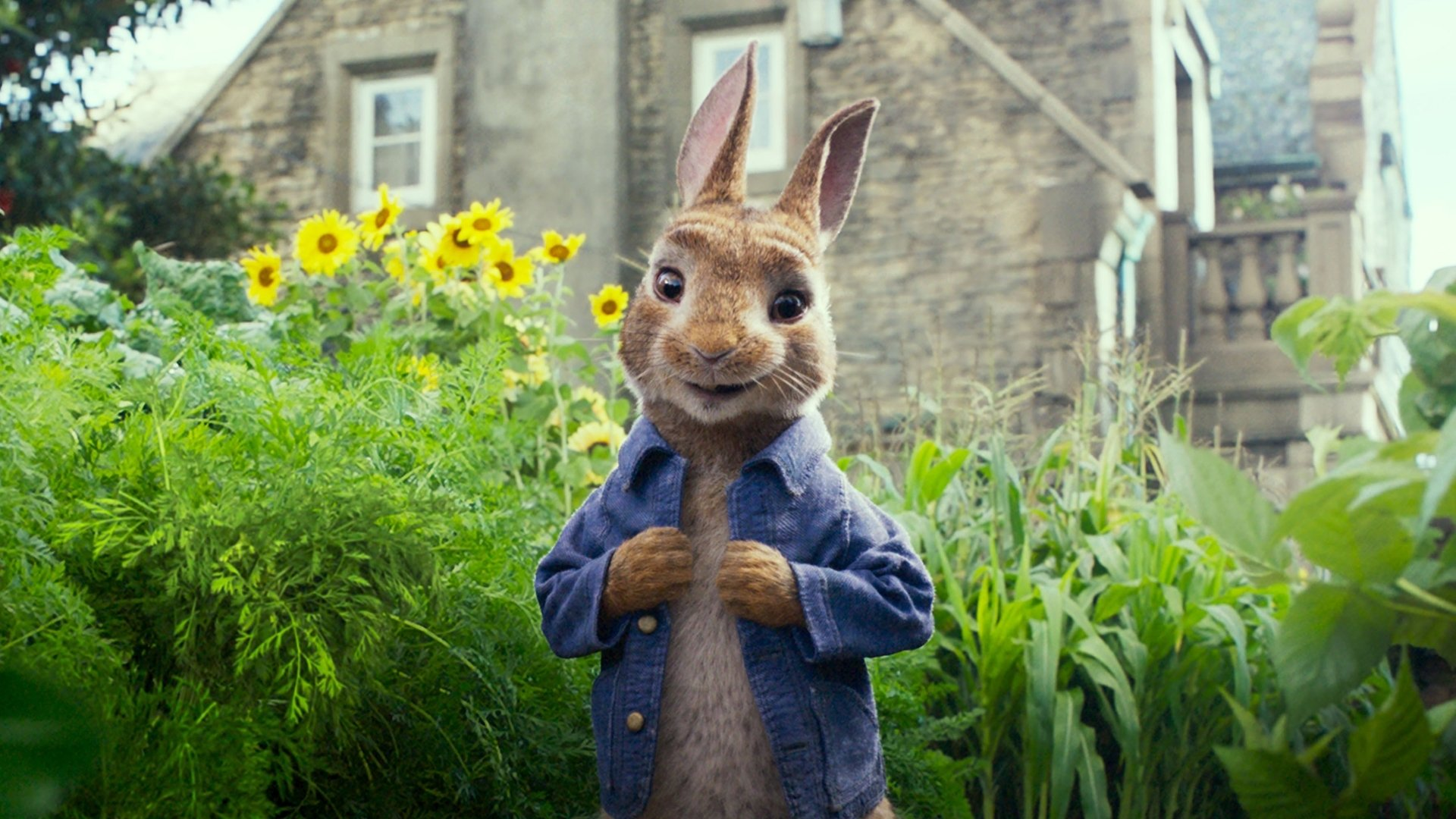 Peter Rabbit HD Wallpaper | Background Image | 1920x1080 | ID ...