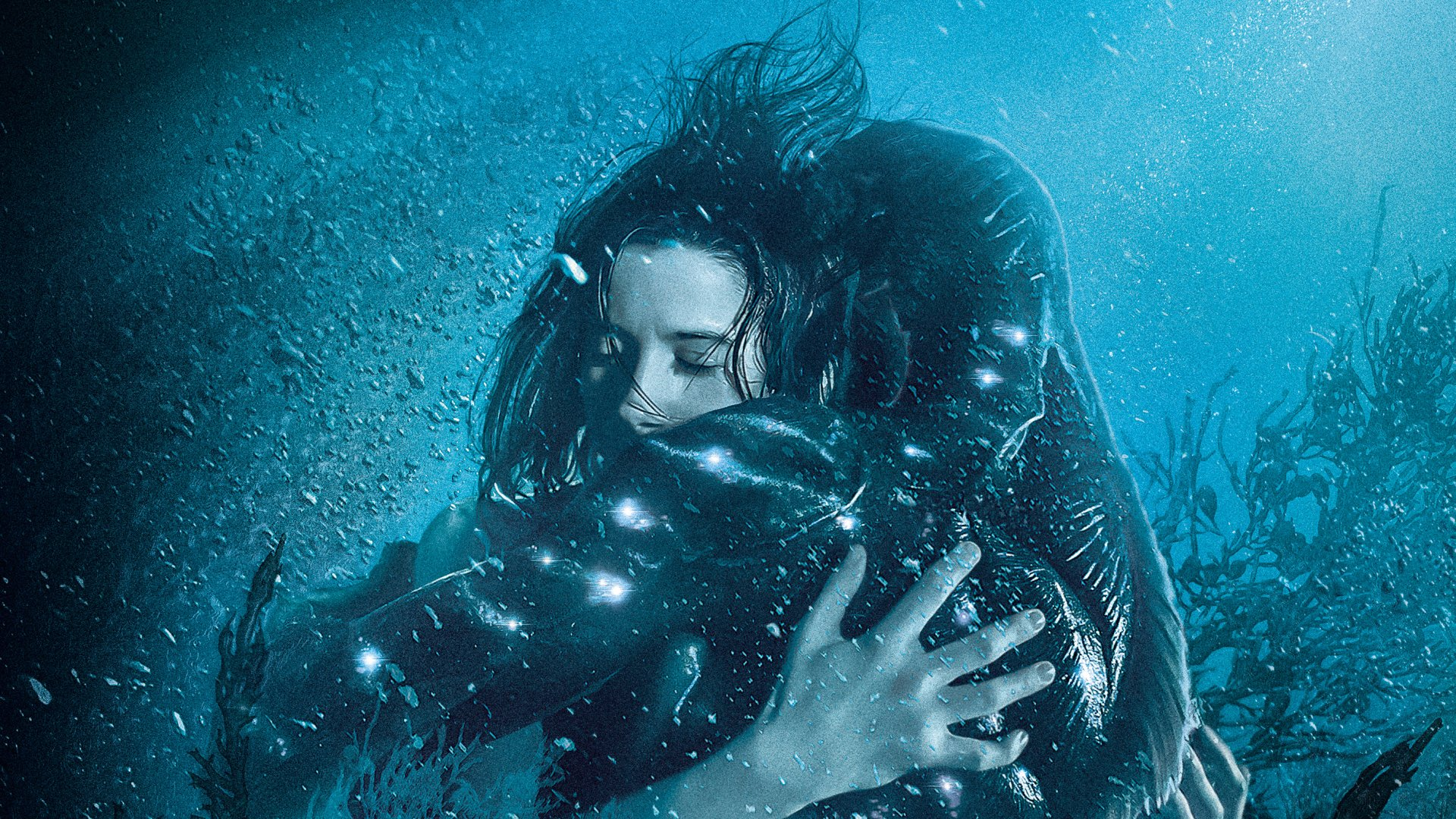 27 The Shape Of Water Hd Wallpapers Background Images