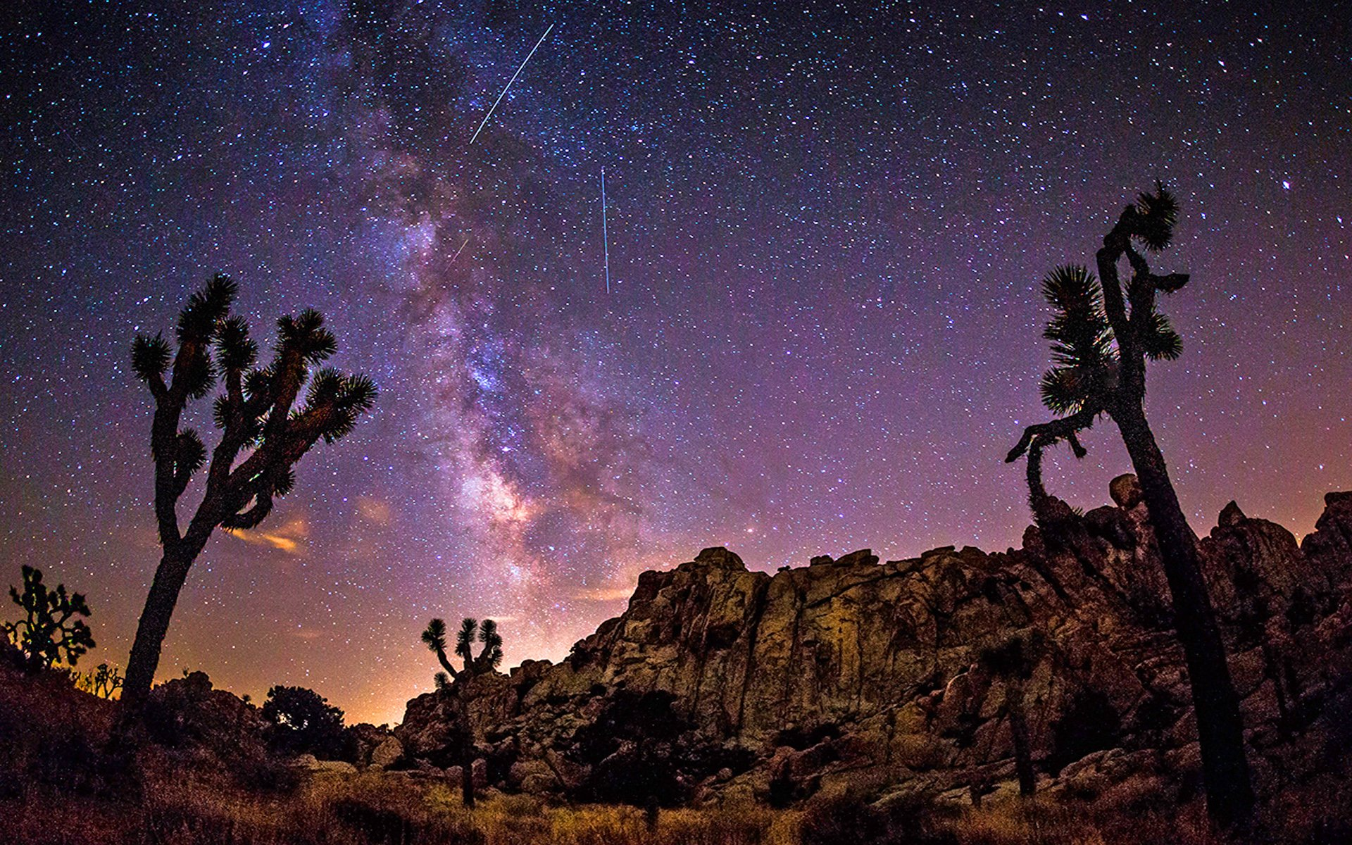 milky way sky over joshua trees in the desert full hd wallpaper and