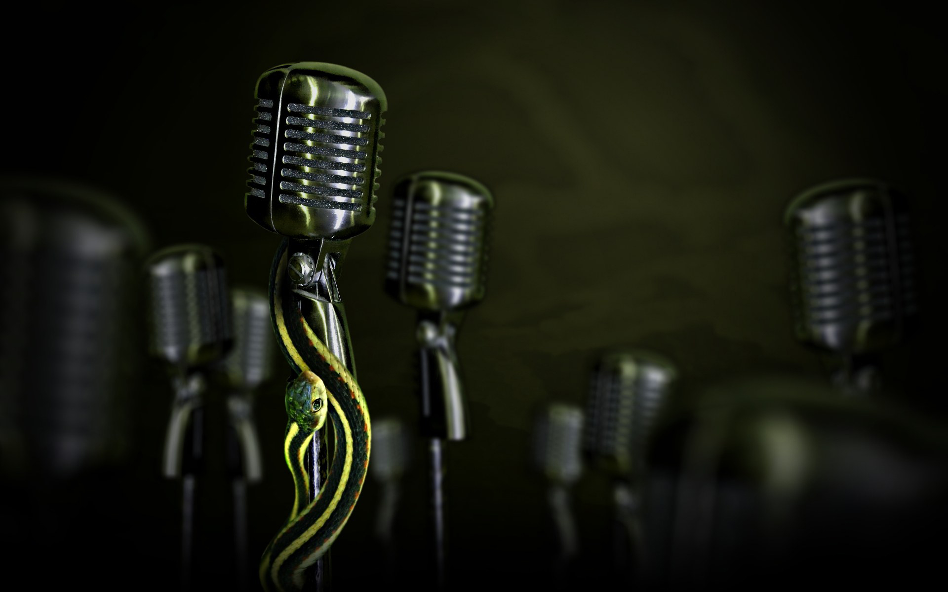 Snakes On Microphone Hd Wallpaper Background Image 1920x1200