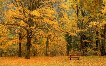 Earth - Autumn Wallpapers and Backgrounds ID : 96353