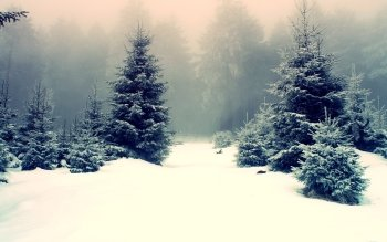 Earth - Winter Wallpapers and Backgrounds ID : 96713