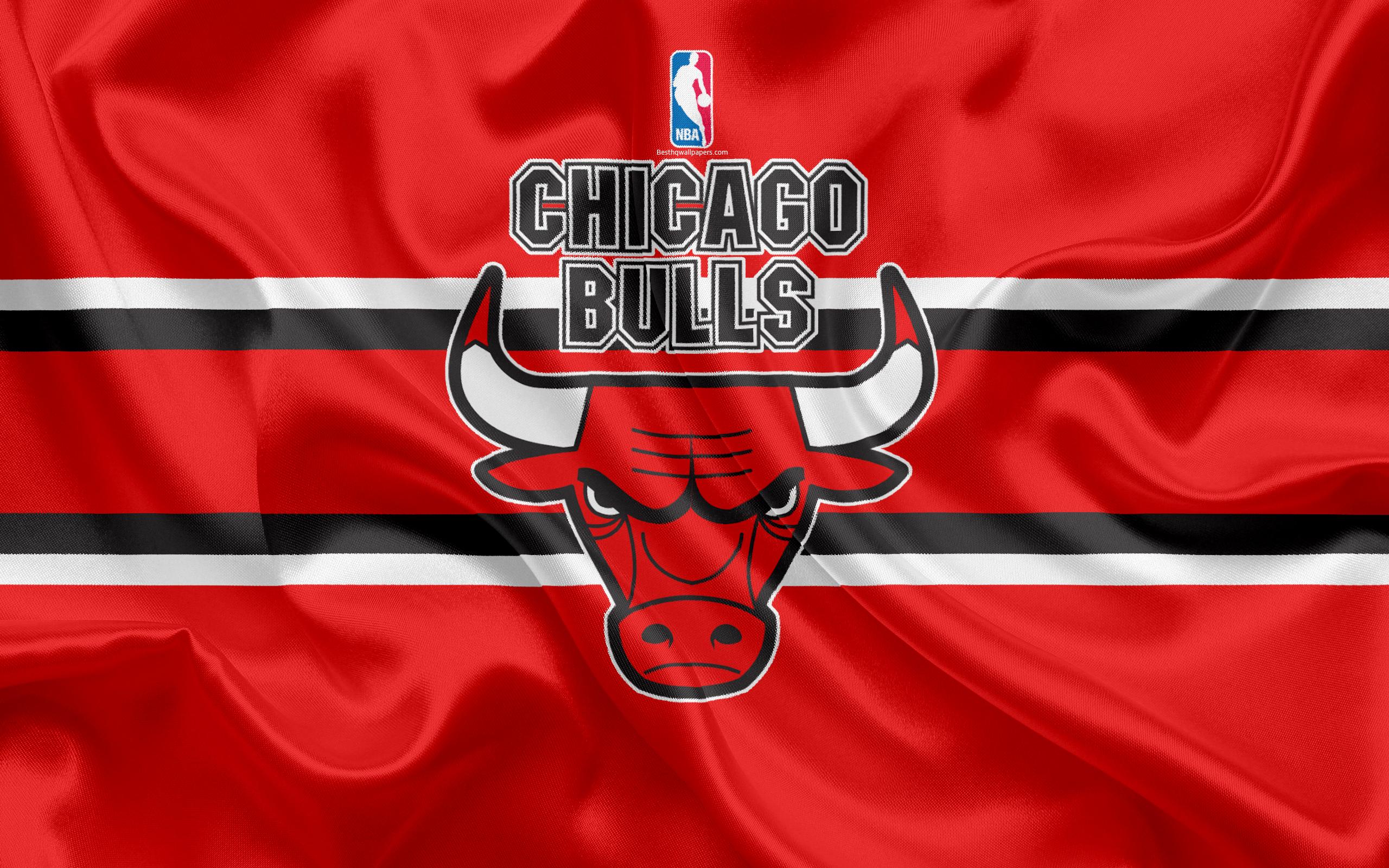 Chicago Bulls Logo Hd Wallpaper Background Image 2560x1600