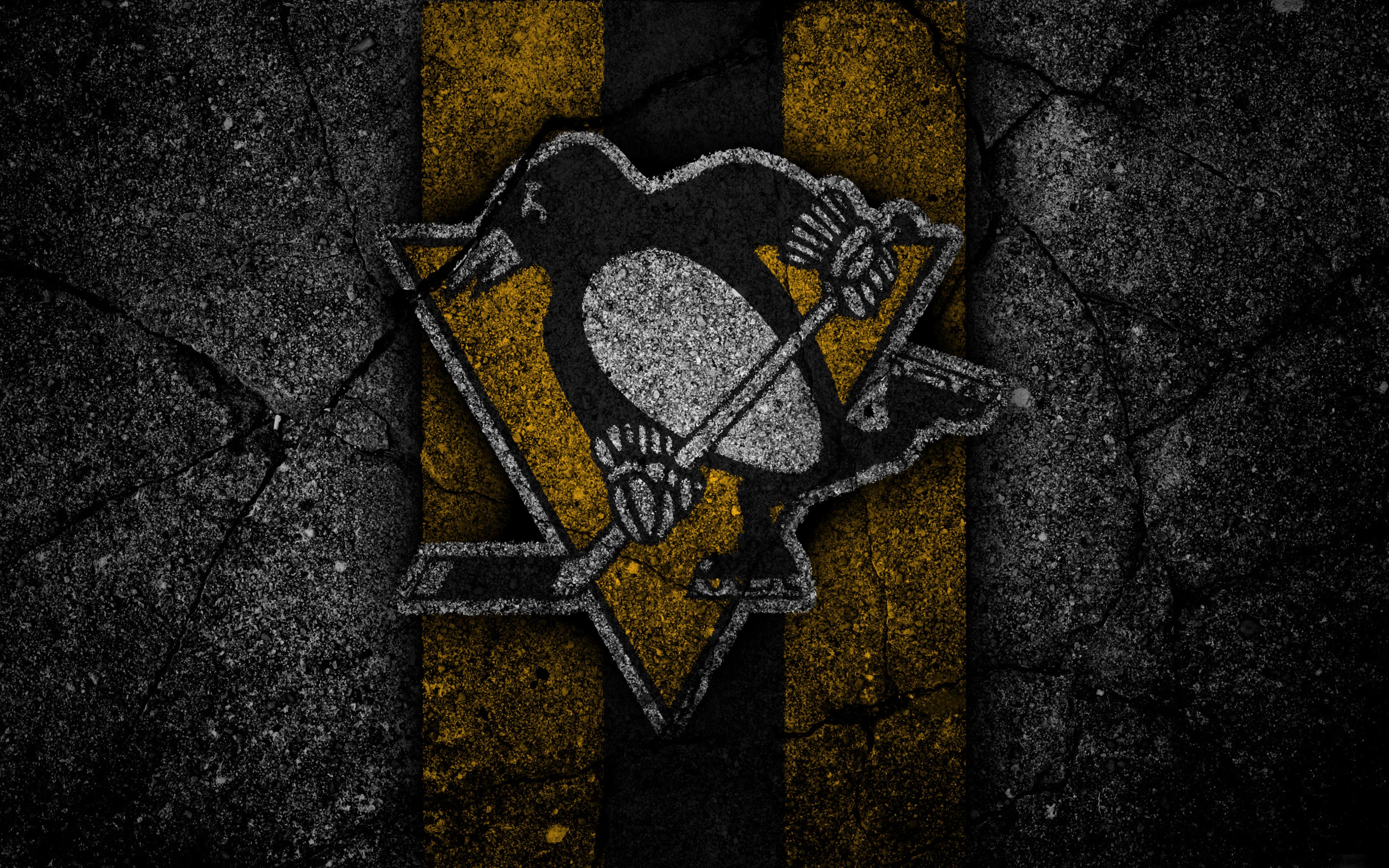 Pittsburgh Penguins 4k Ultra Fondo De Pantalla Hd Fondo De