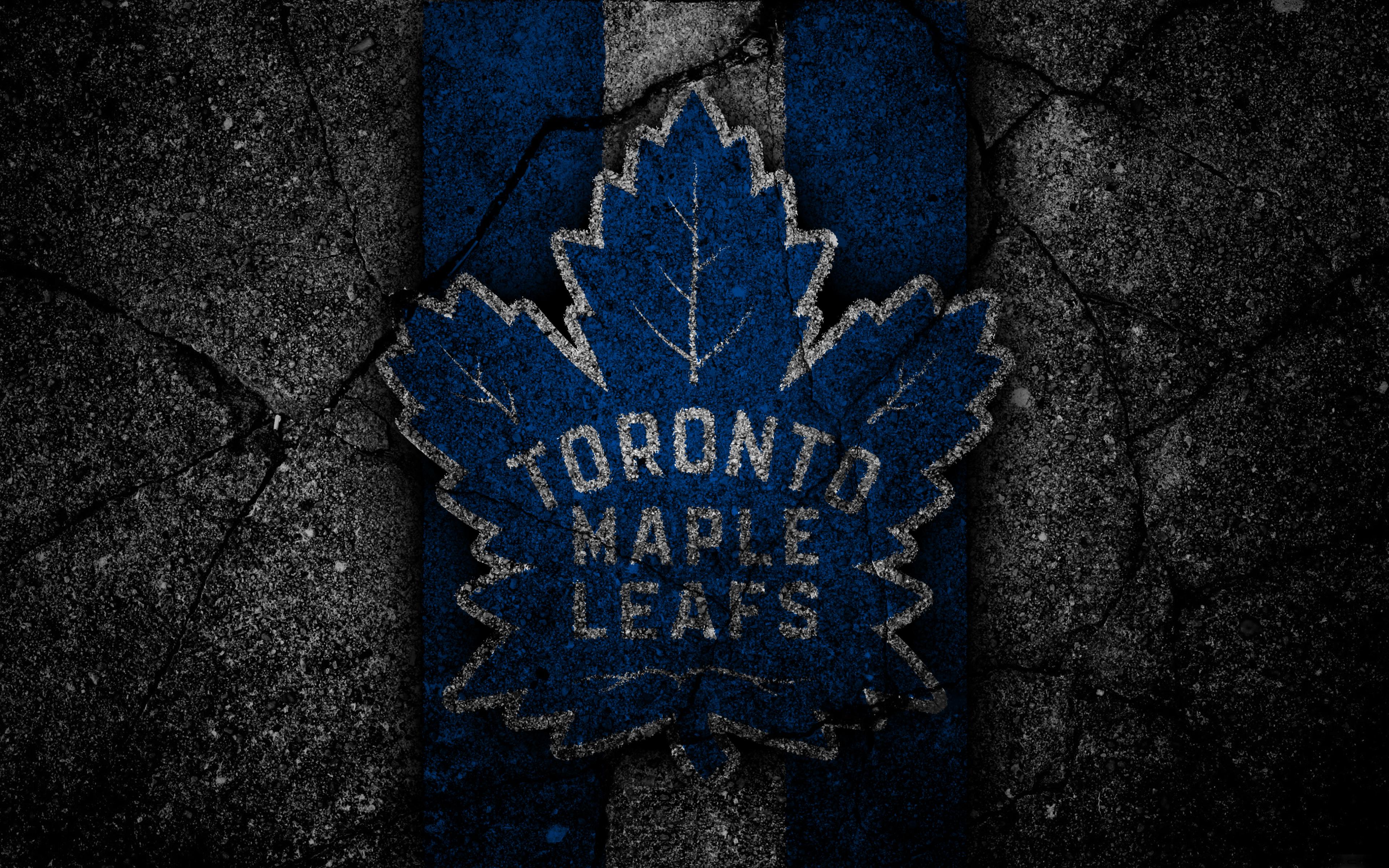 foto de Toronto Maple Leafs 4k Ultra HD
