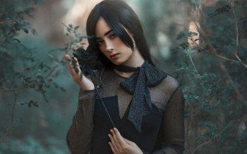 5 Black Rose Fondos De Pantalla Hd Fondos De Escritorio