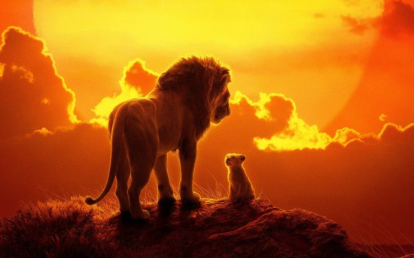 Movie The Lion King (2019) Simba Mufasa HD Wallpaper | Background Image